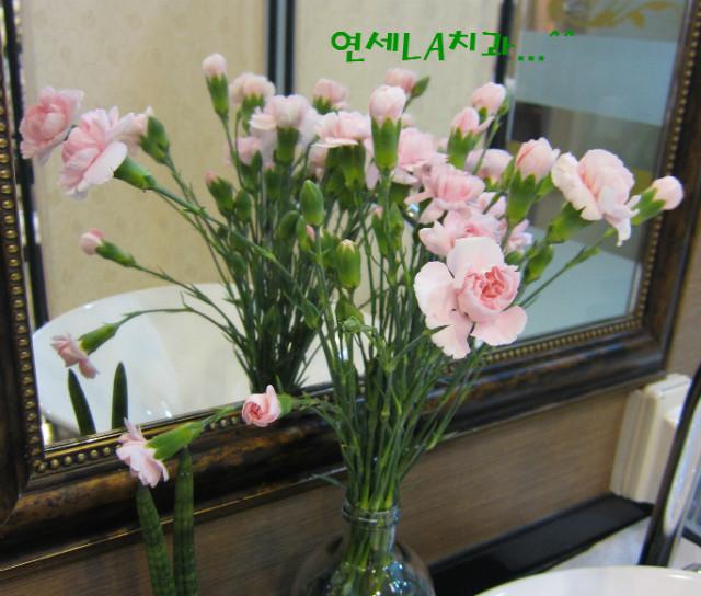 국중금님 꽃.JPG